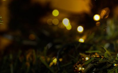 Send us your Christmas Tree Pictures