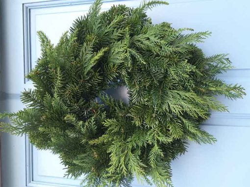 10 inch Undecorated Mixed Foliage Christmas Wreath from Eden Christmas Trees