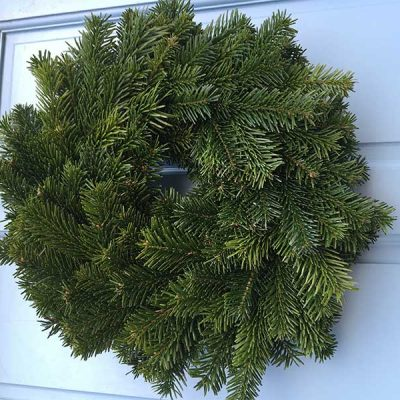 10 Inch Undecorated Nordman Wreath
