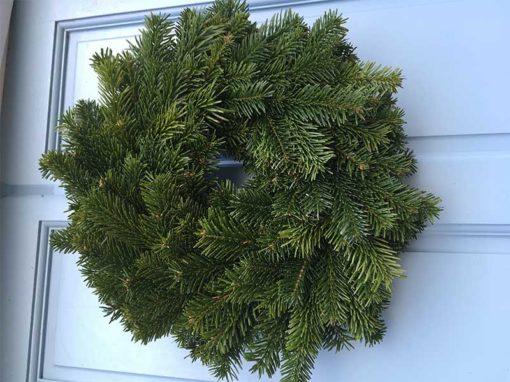 10 Inch Undecorated Nordman Wreath