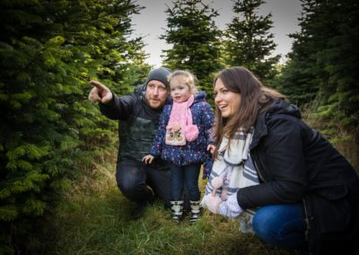 Edenmill Christmas Trees